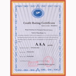 信用等级证书AAA级(ENG)